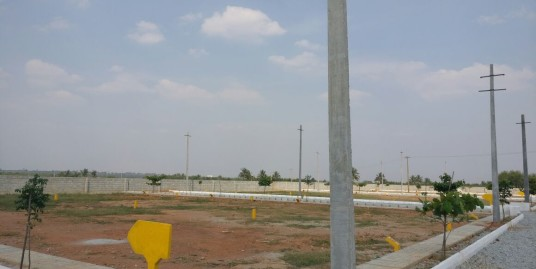 Fully Developed Residential Plots