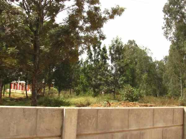 Sobha Silicon Oasis Pic 2